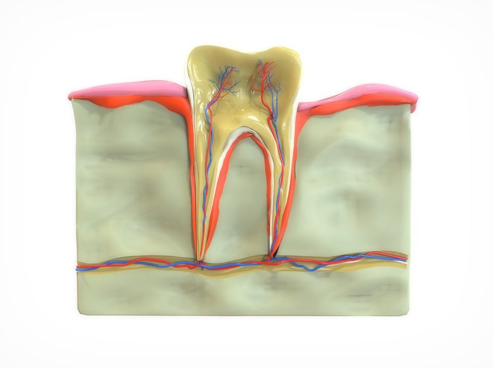 How Stroke and Oral Health are Related